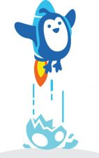 launchrocketbird